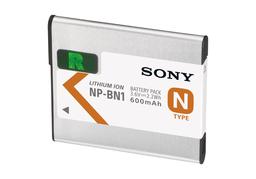 NPBN1